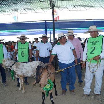 Sector caprino se reunió en gran Expo Feria en Piura