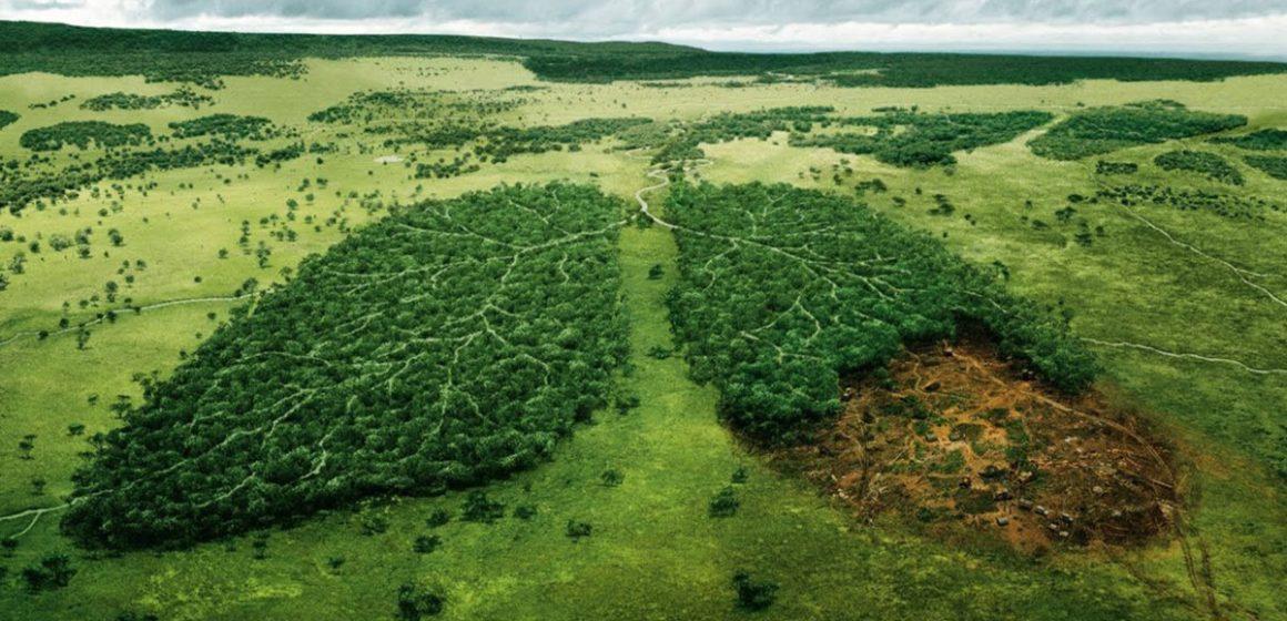 UECBV establece reglas para mitigar huella ambiental de producción ganadera