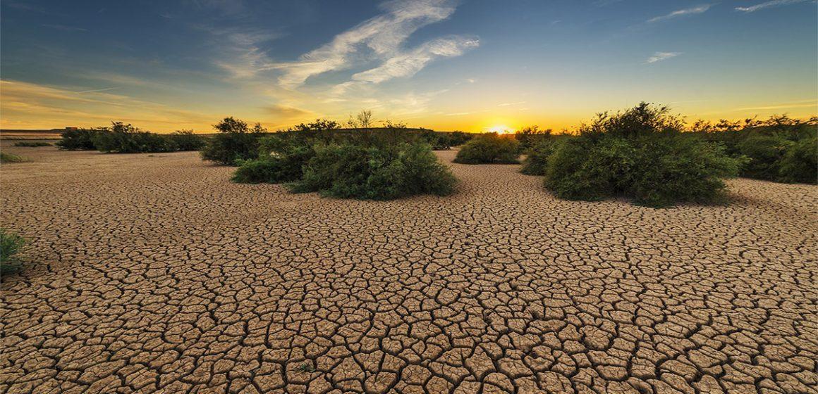 Sequías siguen afectando estados de México