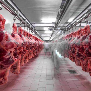 Exportaciones de carne argentina crecen un 72%
