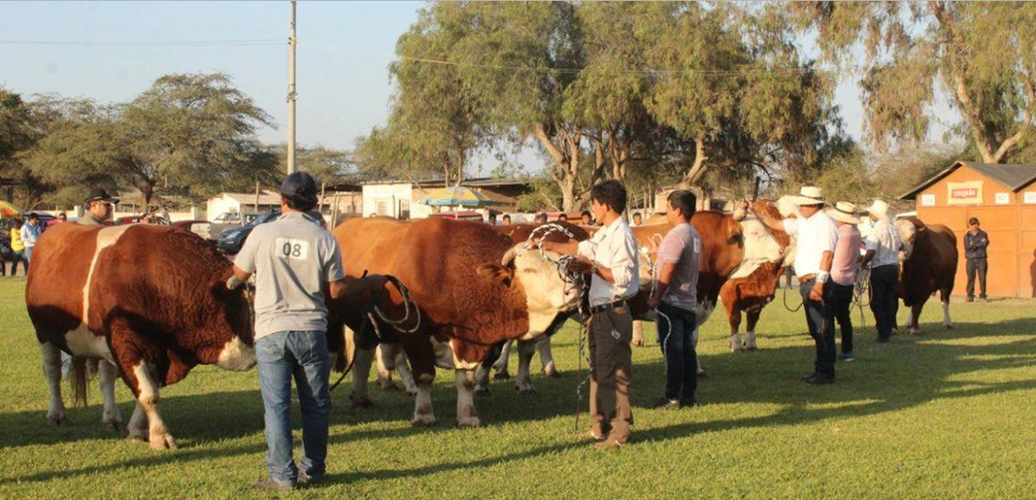 Feria Regional Ganadera inicia en Lambayeque
