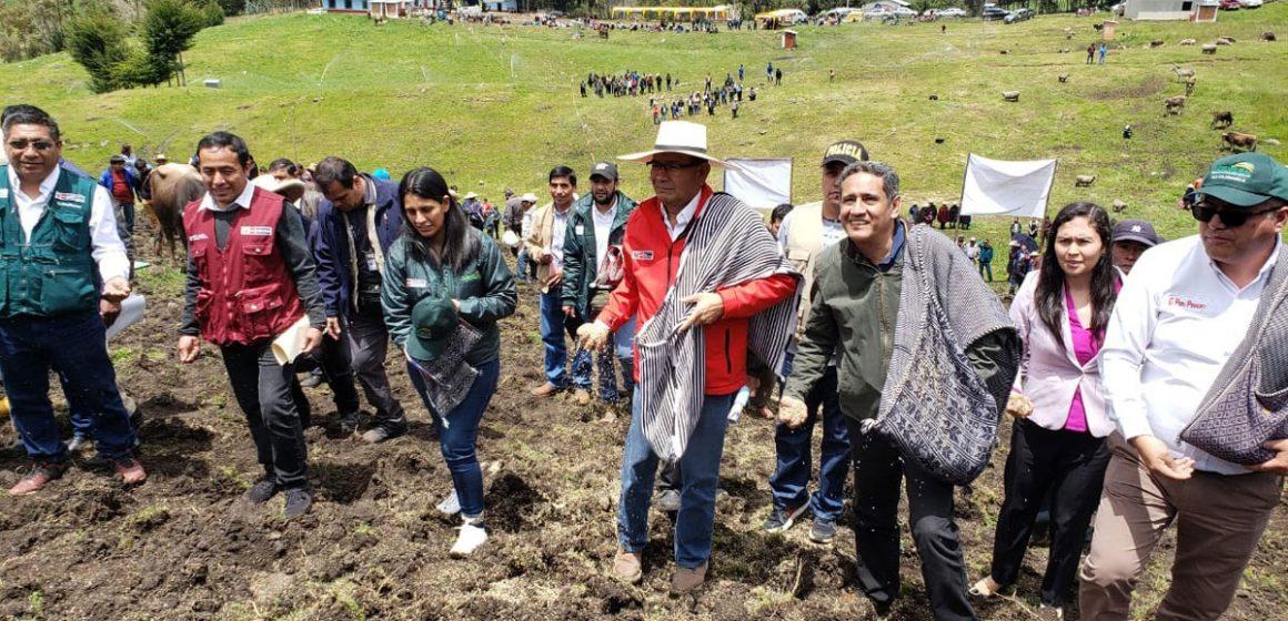 Minagri inició siembra de pastos en Cajamarca