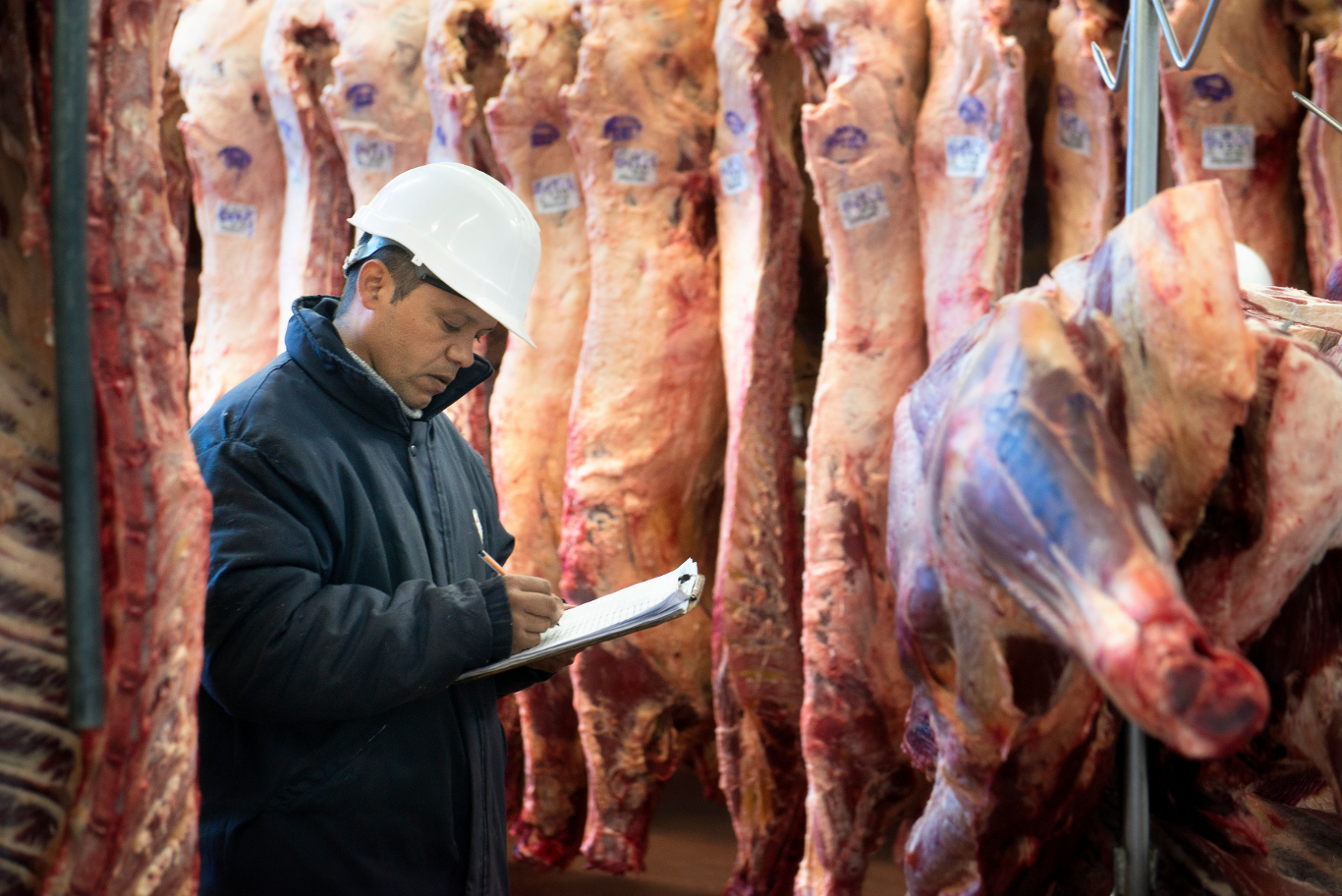 Colombia busca exportar carne a Egipto
