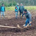 Áncash: Inició plan piloto para mejorar alimentación ganadera