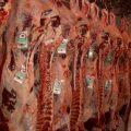 Brasil: producción de res incrementará en 2020
