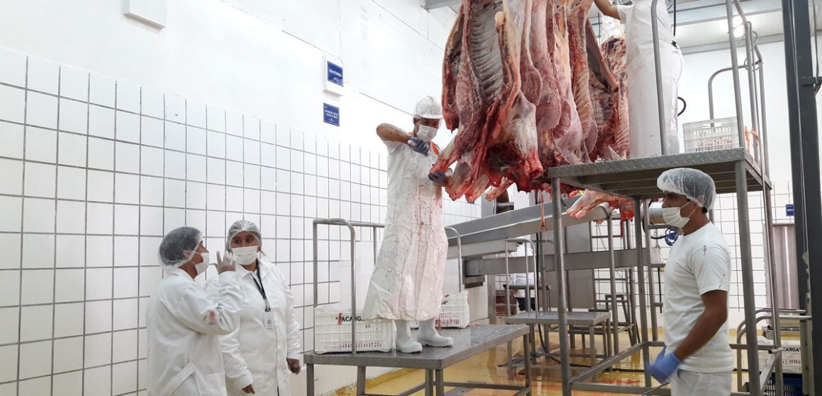 Cajamarca inició implementación de mataderos