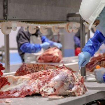 México exportará carne de bovino a Singapur