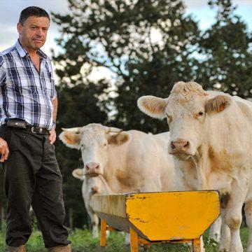 COVID-19 en Perú: señor ganadero cuídese, a su familia y a sus colaboradores