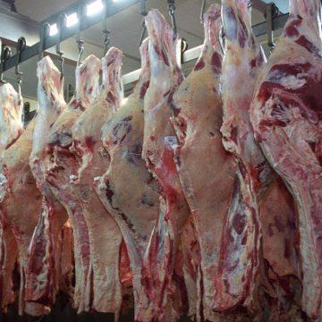Bolivia garantiza seguridad alimentaria y abastecimiento de carne