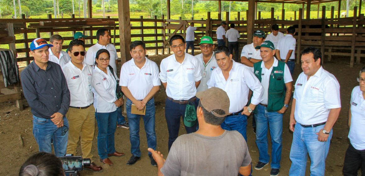Fortalecen sector agropecuario en Huánuco