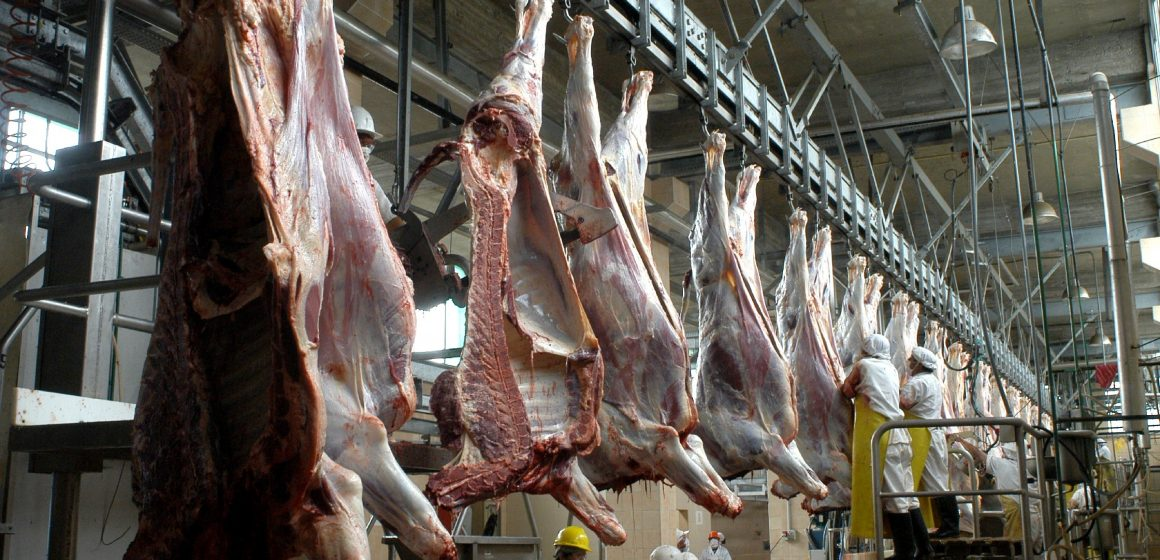 Uruguay: sector ganadero produjo un 25,5% menos de carne de vacuno