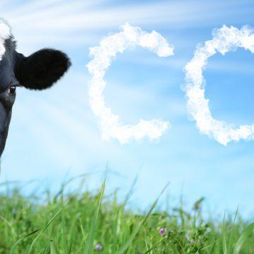 Trece empresas lácteas causan más emisiones de efecto invernadero que la sexta economía del mundo
