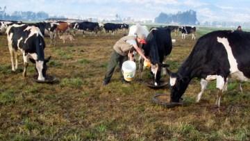 Conozca qué requisitos solicitan para acceder a FAE AGRO
