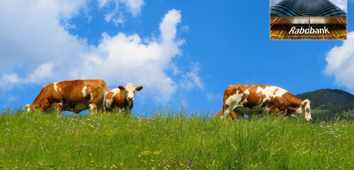 Rabobank: Sustentabilidad, principal factor para el crecimiento de la ganadería mundial