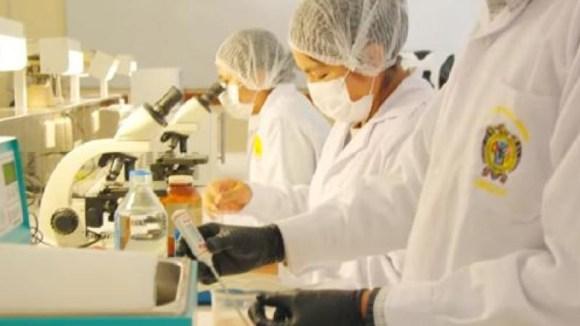 Impulsan biotecnología reproductiva para mejorar ganadería en Ayacucho