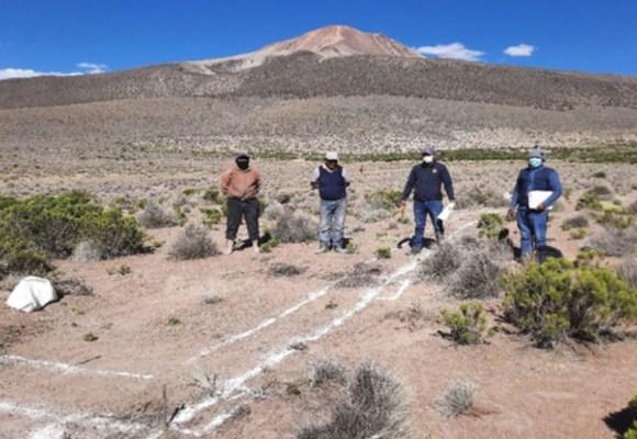 Construyen cobertizos para proteger 6,500 cabezas de ganado en Tacna