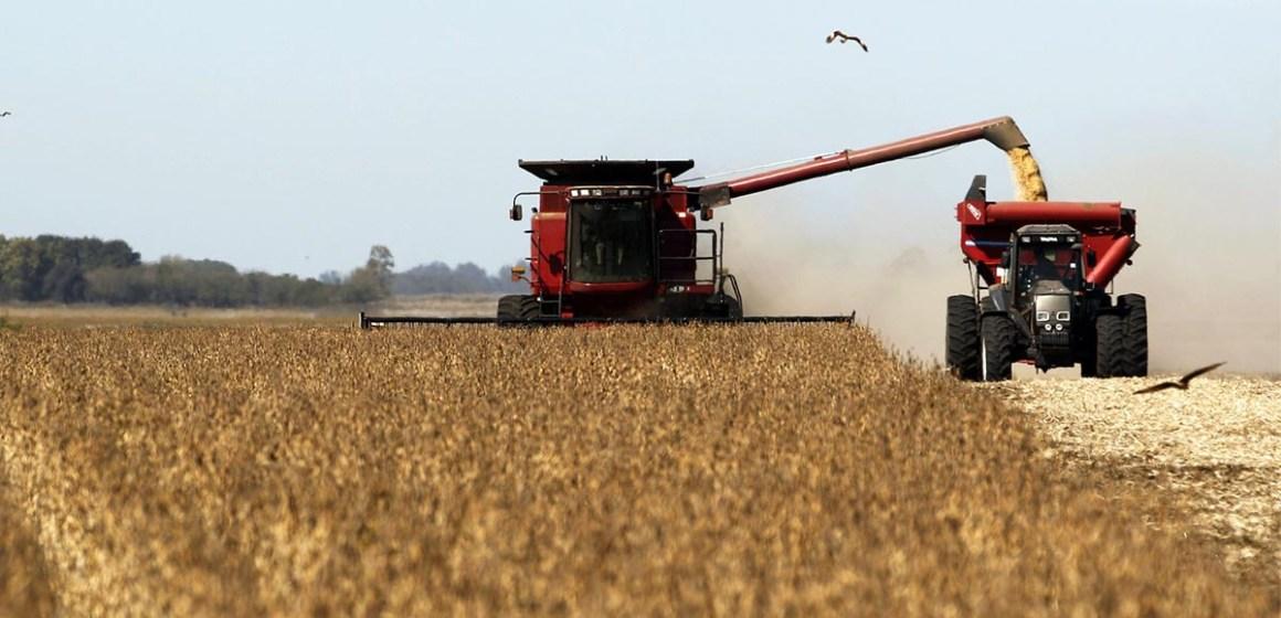 USDA baja las perspectivas para las cosechas de maíz y soja en EE.UU.