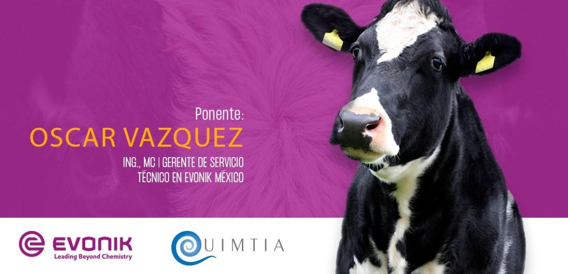 Webinar de Quimtia y Evonik sustentó importancia de la metionina en la producción lechera