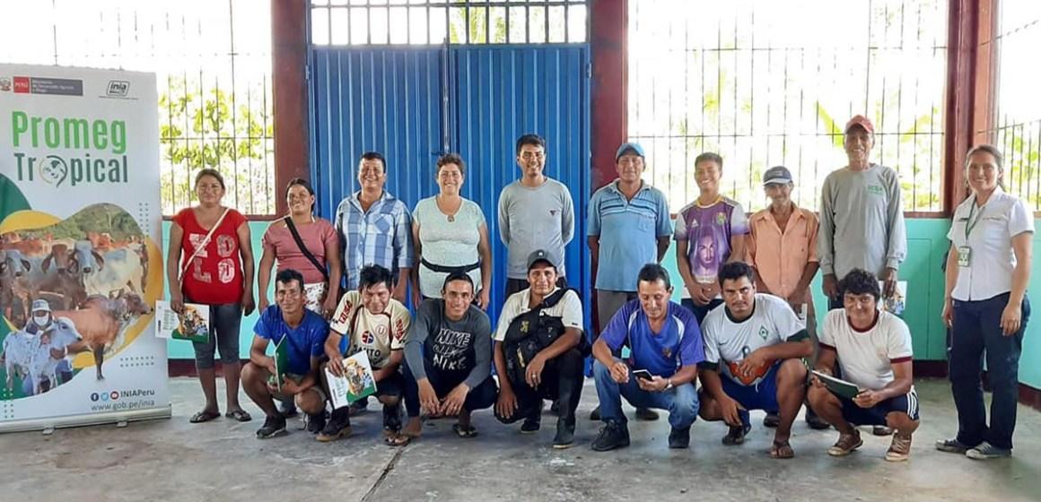 INIA continúa capacitación en inseminación bovina en región Amazonas