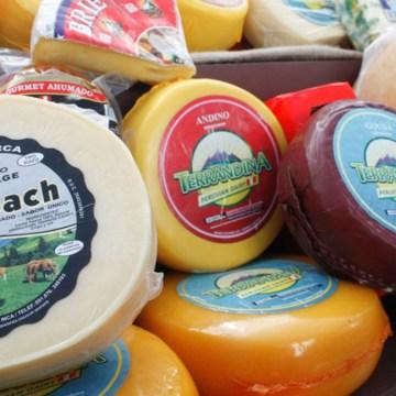 Establecen requisitos de calidad del queso para su comercialización