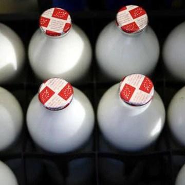 Reino Unido: leche se avinagra por escasez de trabajadores y camiones tras crisis del Brexit